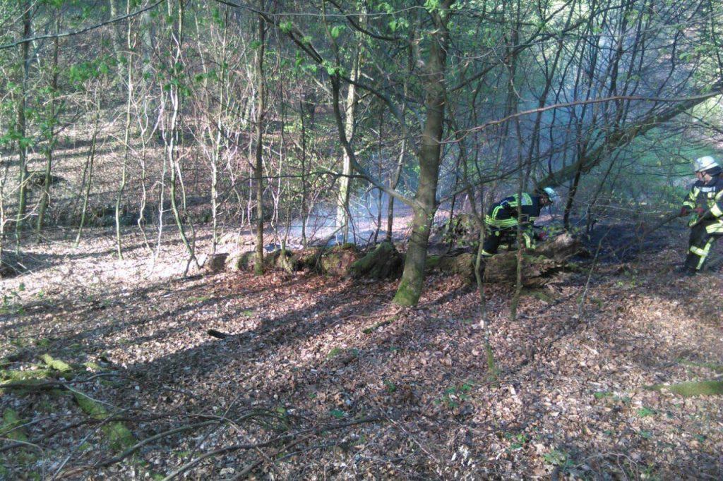Waldbrand im Bereich der ehemaligen Beeringer Hütte