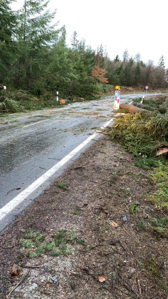 Sturmschaden - Mehrere umgestürzte Bäume